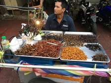 Studies abroad at the International College King Mongkut's Institute of Technology Ladkrabang (KMITL), Bangkok / Thailand, Food stall selling insects
